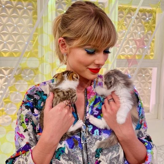 Taylor Swifts cats